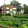 How urban agriculture in Detroit is helping communities...